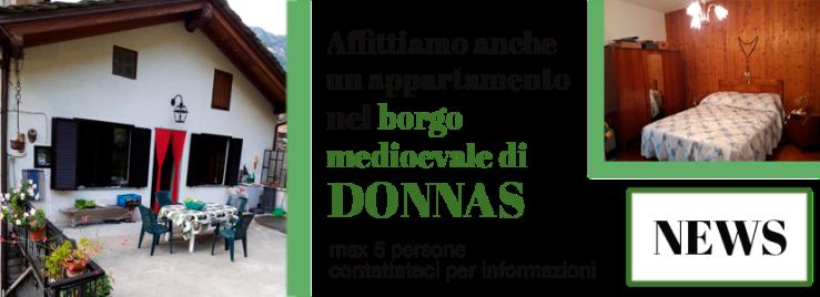 banner_bioula_donnas